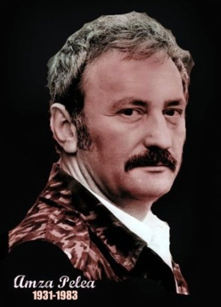 Amza Pellea, Romanian actor | coloRostariu  |Amza Pellea