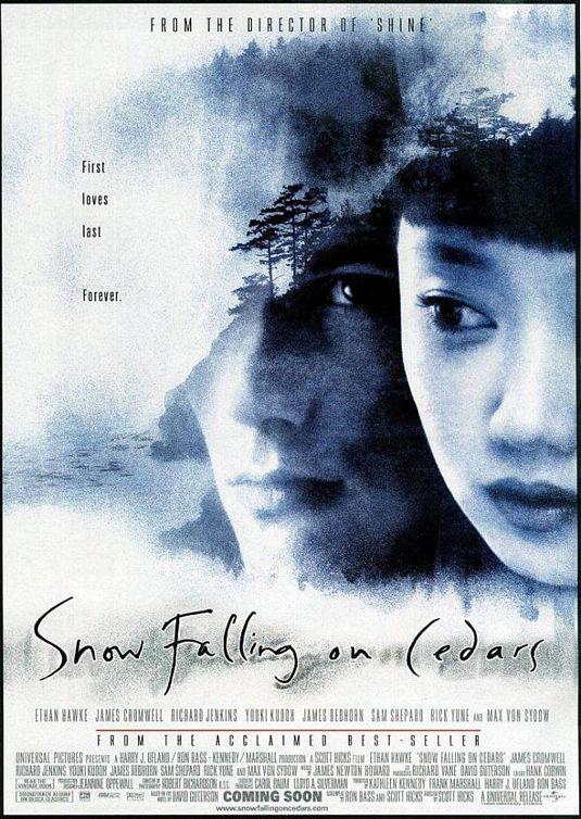 essay on snow falling on cedars