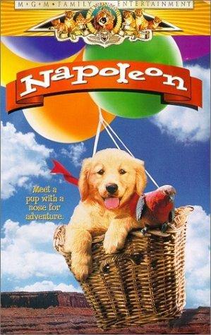 napoleon-390681l.jpg