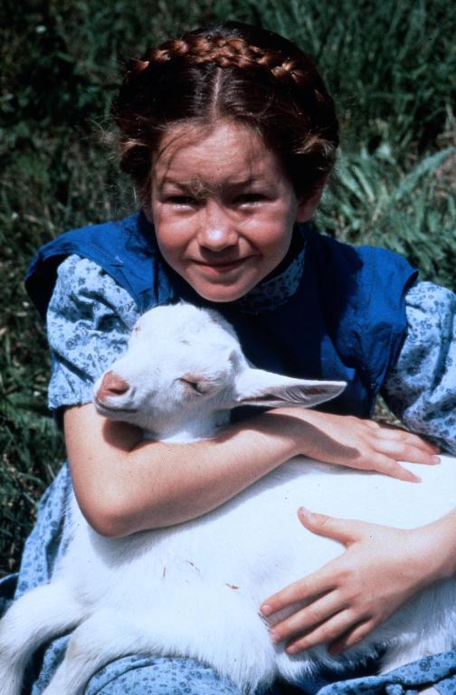 Imagini heidi 1993 imagini heidi feti a mun ilor imagine 4