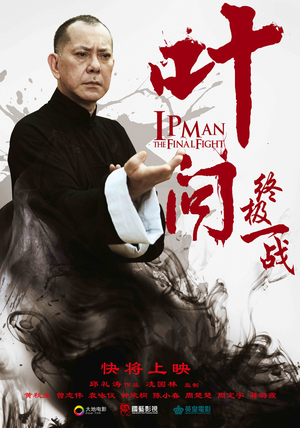 Ip Man The Final Fight (2013)