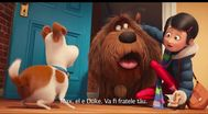 Trailer The Secret Life of Pets