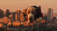 Trailer Underdog