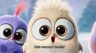 Trailer The Angry Birds Movie
