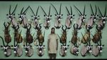 Trailer film Safari