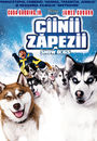 Film - Snow Dogs