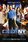 CSI: New York - Criminalitii