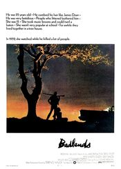 Poster Badlands