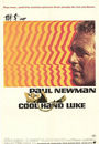 Film - Cool Hand Luke