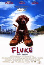 Poster Fluke