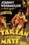 Noile aventuri ale lui Tarzan