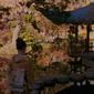 Memoirs of a Geisha/Memoriile unei Gheișe