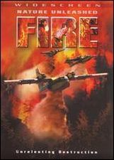 Nature Unleashed: Fire (2004) Focul Online Subtitrat in Romana