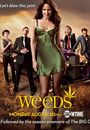 Film - Weeds