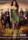 Film - Weeds