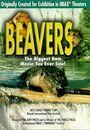 Film - Beavers