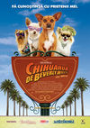 Chihuahua de Beverly Hills
