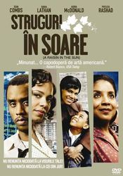 Poster A Raisin in the Sun