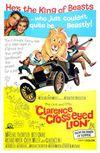 Clarence, leul cu strabism