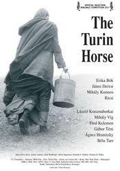 Poster A torinói ló