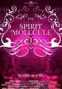Film - DMT: The Spirit Molecule