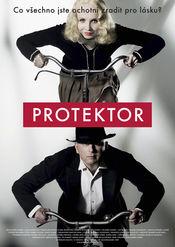 Poster Protektor