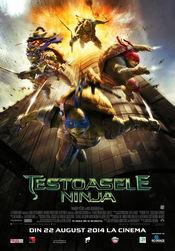 Teenage Mutant Ninja Turtles online subtitrat