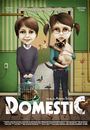 Film - Domestic