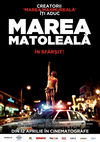 Marea matoleal