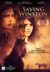 Saving Winston (2011) Online Subtitrat