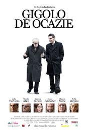 Fading Gigolo - Gigolo de ocazie (2013) Online subtitrat