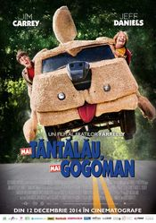 Mai tăntălău, mai gogoman - Dumb and Dumber To (2014) Online Subtitrat