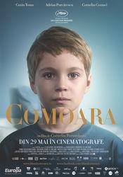 Poster Comoara