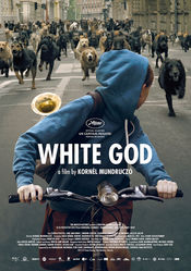 Fehér isten online subtitrat