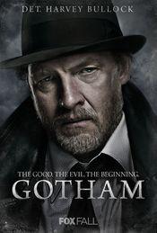 Gotham: Gotham (2014) Serial Online Sezonul 3 Subtitrat