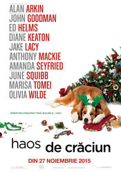 Love the Coopers (2015) / Haos de Craciun Subtitrat in Romana
