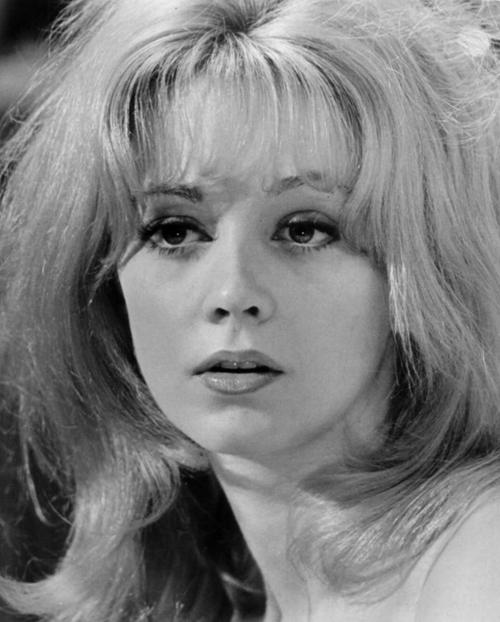 Poze Elaine Taylor - Actor - Poza 2 din 2 - CineMagia.ro