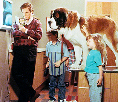 Beethoven Movie What Kind Of Dog