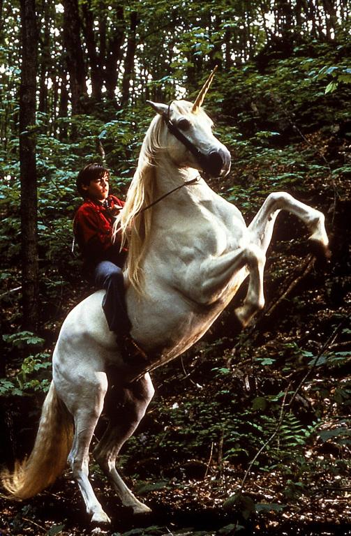 Imagini Nico The Unicorn 1998 Imagini Nico Inorogul