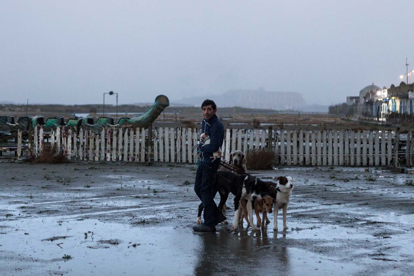 Frizerul de câini - Dogman (2018) Online Subtitrat in Romana
