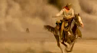 Trailer Hidalgo