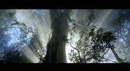 Trailer Il était une forêt