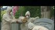 Trailer Legiunea străină