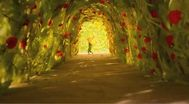 Trailer The Little Prince