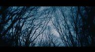 Trailer In Fear