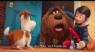 Trailer The Secret Life of Pets