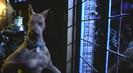 Trailer film Scooby-Doo