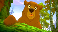 Trailer Brother Bear