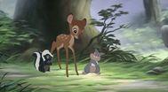 Trailer Bambi II