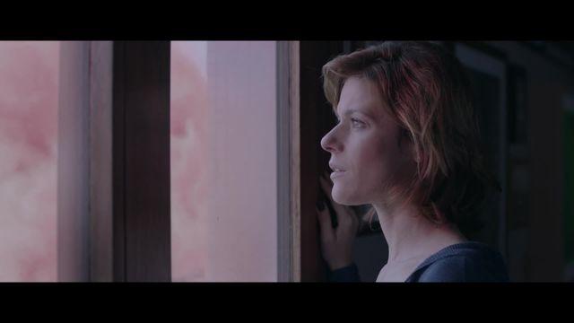 Trailer - Norul roz